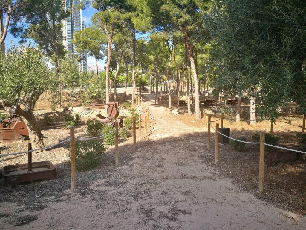 Parque Sequia Mare Benidorm